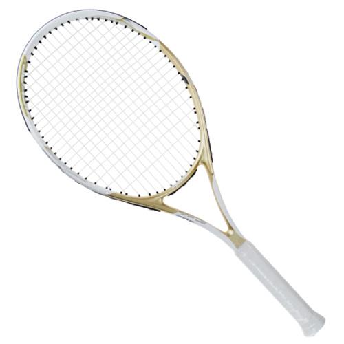 中极星ZJ302网球拍高清图片