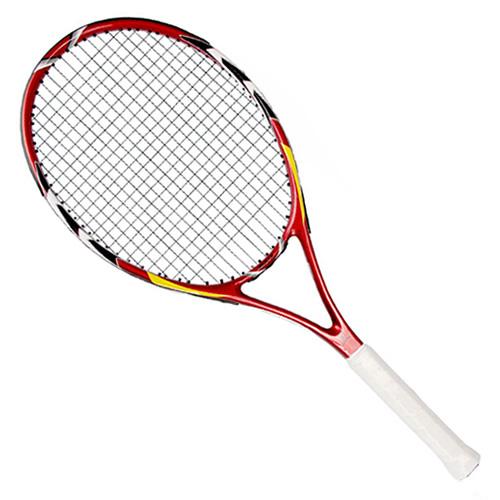 中极星ZJ202网球拍
