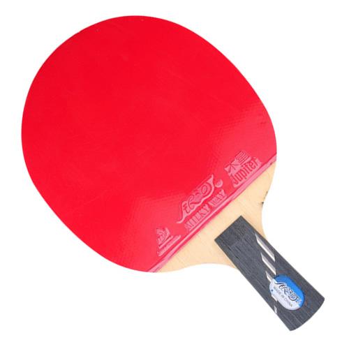 银河10D乒乓球拍