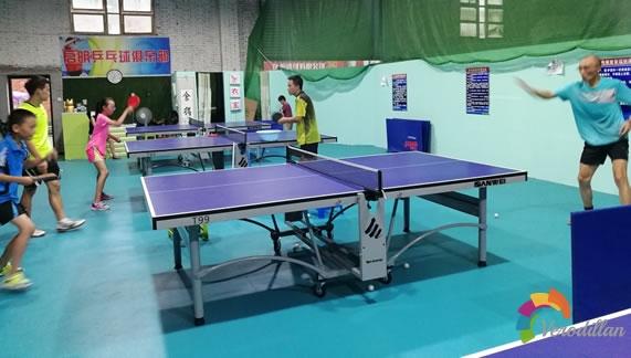 亚萨卡YEO7乒乓底板试用测评图3