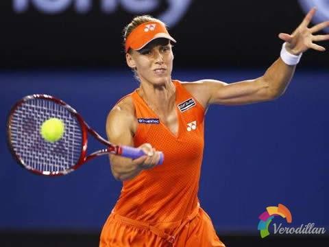 7位网球大师,7种网球技战术
