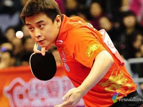 乒乓球业余比赛和职业比赛有哪些不同[心得体会]